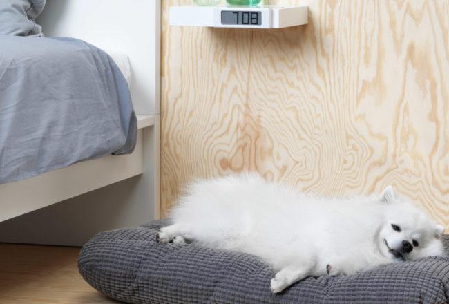 IKEA- LURVIG